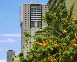 Lifetime in Hawaii At the Royal Kuhio from $100