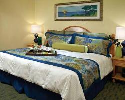 Blue Tree Resort at Lake Buena Vista from $136
